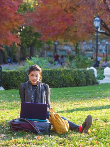 Student sitting on the grass looking at laptop
